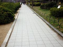 136484190.jpg (240×180)